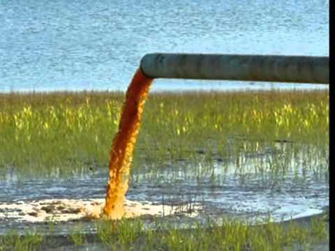 بالصور بحث حول التلوث البيئي بالصور , معلومات لا تعرفها عن التلوث واضراره 12947 1