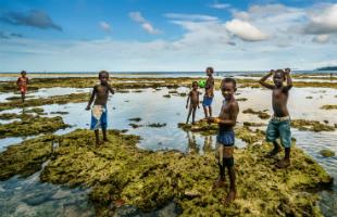 بالصور بحث حول التلوث البيئي بالصور , معلومات لا تعرفها عن التلوث واضراره 12947 2