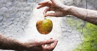 صورة قصة ادم وحواء , ابو البشر ادم