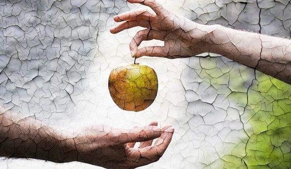 صور قصة ادم وحواء , ابو البشر ادم