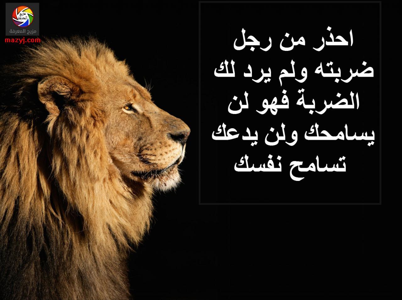 ابيات شعر مدح اقوى كلمات الغزل والمدح بالصور صور بنات