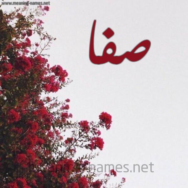 صور اسم صفاء اجمل صور الاسماء صور بنات