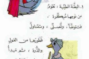 صور قصص اطفال مصورة قصيرة جدا جدا , بالصور اجمل القصص للاطفال