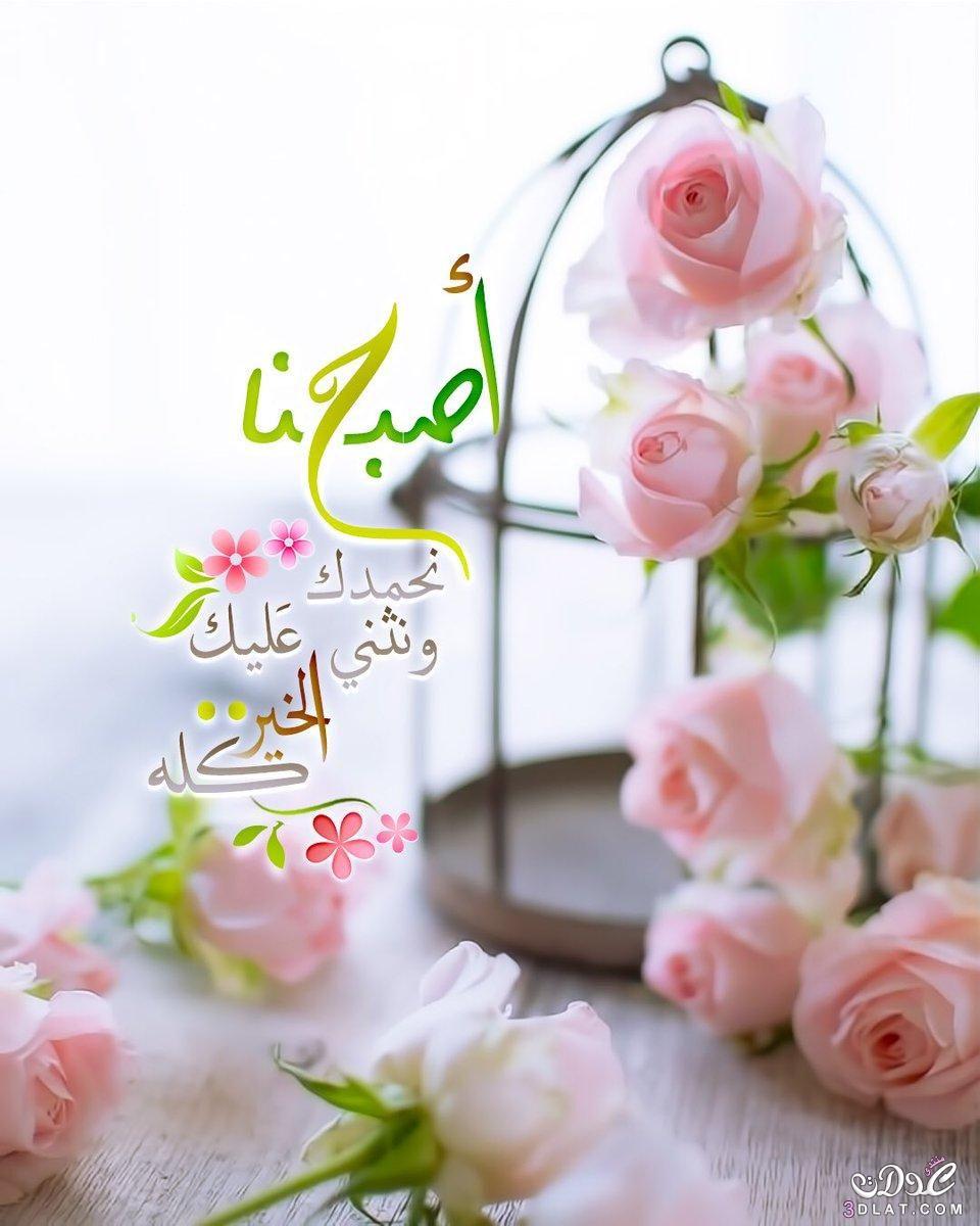 صورة صورصباح الخير , اجمل الصور المعبرة عن الصباح 3905 9