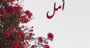 صور صور اسم امل , صور جميلة مكتوب عليها اسم امل