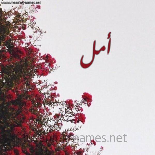 صور اسم امل Aml صور أسم أمل