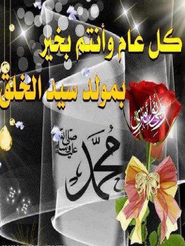 صور مولد النبي صور احتفالات مولد اشرف الخلق الرسول صلي الله