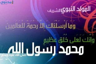 صورة اجمل الصور عن المولد النبوي الشريف , احتفالات جميلة بالمولد النبي بالصور