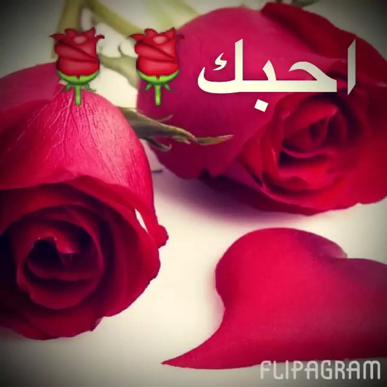 صور صور احبك , صور غرامية مكتوب عليها كلمة احبك