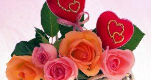 صورة زهور الحب,اجمل معاني الحب 2496 12 310x165